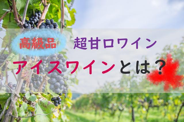 カナダ産アイスワインが高級品の理由。相場価格と日本で買えるおすすめ品